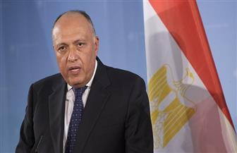 سامح شكري: الرباعي العربي ملتزم بموقفه ضد قطر