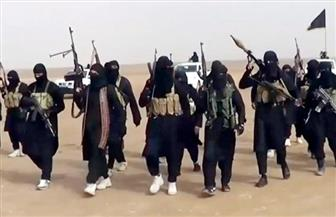 ما هو مصير مقاتلي تنظيم داعش المعتقلين بسوريا ؟