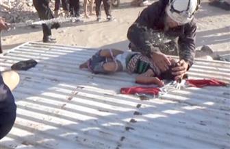 """""""رئيس لجنة التحقيق الدولية"""": الهجوم الكيماوي في خان شيخون نفذته طائرات الأسد"""