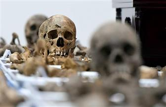 """استجابة لـ""""الأهرام"""".. النيابة العامة والبحث الجنائي يعاينان رفات الموتى اليوم بأسيوط"""