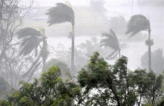 انقطاع الكهرباء عن أكثر من مليون منزل وشركة في فلوريدا بسبب إعصار إرما