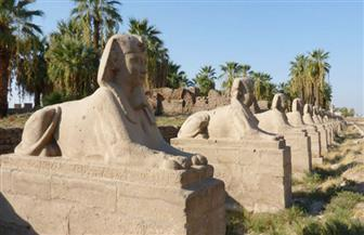 """مصر تستقبل أول بعثة آثار صينية.. وتفتتح """"طريق الكباش"""" في مارس المقبل"""