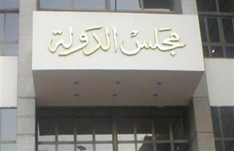 مجلس الدولة يتسلم اللائحة التنفيذية لقانون التأمين الصحي لمراجعتها