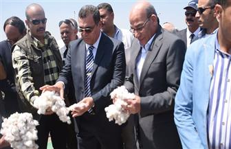 وزير الزراعة يفتتح موسم جني القطن بقرية الإعلام بالفيوم