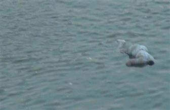 كشف غموض العثور علي جثة حلاق طافية بمياه البحر في البرلس