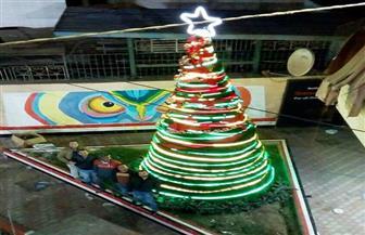 أشجار الكريسماس تزين شوارع وميادين سوهاج