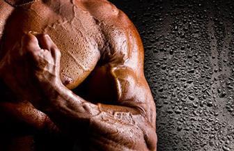استنباط خلايا عضلية من نظيرتها الجلدية