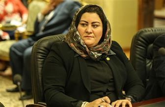 """النائبة غادة صقر: وقعت استمارة تأييد للرئيس السيسي لأنه """"وعد فأوفى"""""""