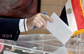 المتحدث باسم الوطنية للانتخابات: منع استخدام أقلام الرصاص في التصويت