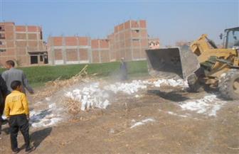 إزالة 24 حالة تعد على 4 أفدنة زراعية بمركز أخميم في سوهاج