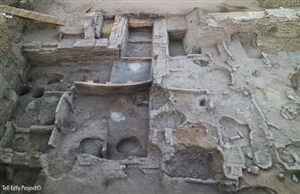 مدير آثار أسوان يكشف تفاصيل الاكتشافات الجديدة بكوم أمبو وإدفو| صور