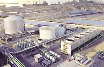 رئيس «النصر للكيماويات»: مصر توقفت عن استيراد الأسمدة الفوسفاتية ونصدر إنتاجنا لأوروبا