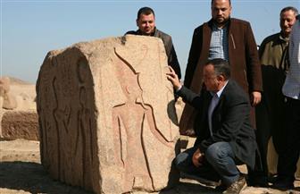 العثور على لوحة أثرية لرمسيس الثاني في منطقة صان الحجر بالشرقية| صور