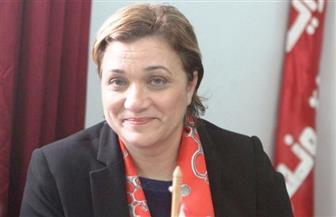 برلمانية تونسية: حركة النهضة هي الذراع السياسية لقطر في تونس | فيديو