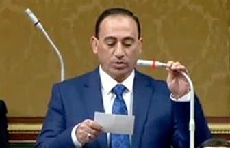 النائب محمد زين الدين: ثورة 30 يونيو أسقطت مخططات اختطاف الدولة المصرية
