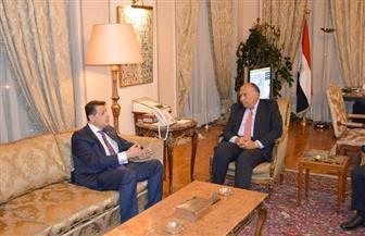 سامح شكري يستقبل رئيس لجنة العلاقات الخارجية بالنواب