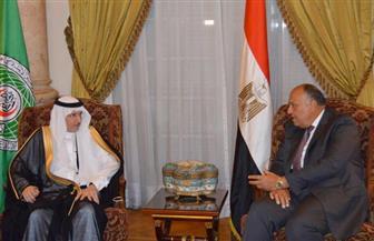 بدء المباحثات بين وزير الخارجية وأمين منظمة التعاون الإسلامى | صور