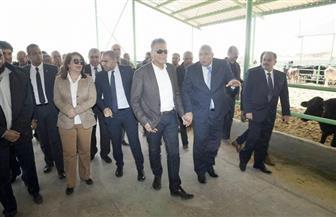 غادة والي تزور مزرعة أرض الخير بالوادى الجديد   صور