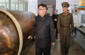 واشنطن وحلفاؤها يطالبون بتشديد إجراءات تفتيش السفن المتجهة من وإلى كوريا الشمالية