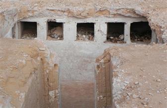 الآثار: الكشف عن مقبرة بالعلمين تعود للقرن الثاني الميلادي | صور