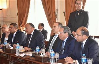 """شكرى: انعقاد اللجنة العليا المصرية الإثيوبية على المستوى الرئاسي """"رسالة إيجابية للرأي العام"""""""