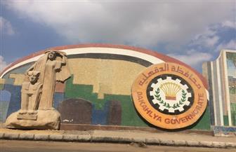 غلق 82 منشأة غذائية وإعدام 1712 كيلو أغذية فاسدة في الدقهلية