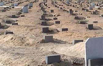 لجنة بالإسكندرية للتحقيق في واقعة نبش القبور وسرقة الموتى بسيدي بشر