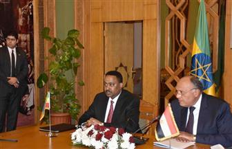 شكري: مصر تؤكد التزامها بالاتفاق الثلاثي بشأن سد النهضة