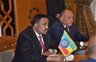 شكري: سد النهصة سيكون نموذجا للتعاون بحوض النيل