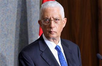 نائب وزير الخارجية يبحث التعاون المشترك مع مدير عام الوكالة الدولية للطاقة الذرية