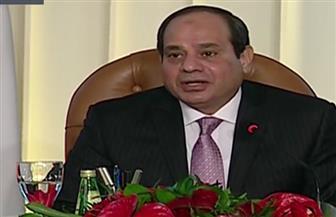 الرئيس السيسي: مشروعات الكهرباء أساس تشغيل المصانع