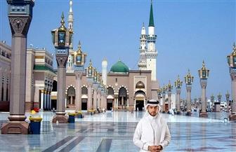 """""""أكاديمية المسجد النبوي الشريف"""" في حلقة خاصة من برنامج """"في رحاب طيبة"""""""