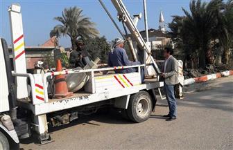 حملة لرفع كفاءة الإنارة ونظافة منطقة أبيدوس الأثرية بسوهاج