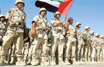 """مسئول عسكري إماراتي: الجيش تلقى تعليمات بعدم تصعيد """"أزمة اعتراض الطائرتين"""" مع قطر"""