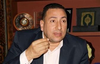 أمين صندوق الصيادلة: الدستور أكد عدم فرض الحراسة على النقابات