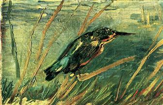 أحزان الطيور (قصيدة)