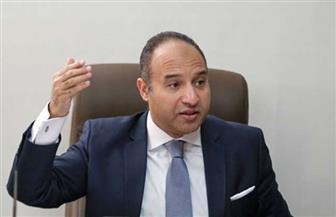 أبوشقة: على كل مصري أن يعتبر صوته الانتخابي طلقة رصاص في الحرب ضد الإرهاب