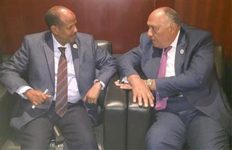 وزير الخارجية يبحث التعاون الثنائي والقضايا الإقليمية مع وزير خارجية جيبوتي