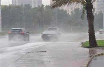 """""""الكرم"""" تغرق شوارع كفر الشيخ وتتسبب في انقطاع الكهرباء"""