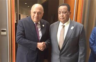وزيرا خارجية مصر والسودان يؤكدان عمق العلاقات التاريخية بين البلدين وضرورة تحصينها من أية اهتزازات| صور