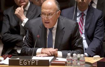 الدبلوماسية تعيد مصر بقوة إلى الساحة الدولية وتصلح أخطاء الماضي