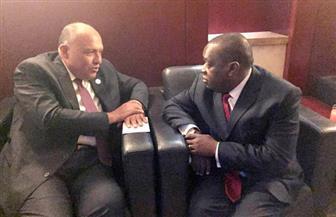 وزير الخارجية يلتقي نظيره الزيمبابوي على هامش قمة الاتحاد الإفريقي