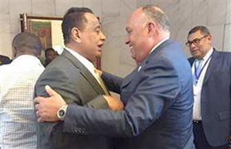 شكرى: أبديت لوزير خارجية الخرطوم رغبتنا في عودة سفير السودان للقاهرة وأبدى موافقة