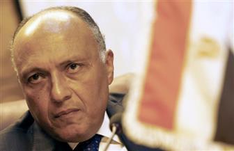 سامح شكري يبحث تطورات القضية الفلسطينية مع منسقة الشئون الخارجية بالاتحاد الأوروبي