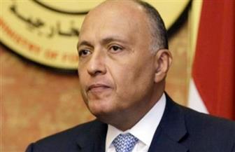 """وزير الخارجية يلتقي مؤسسة """"أنا لند"""" ونائب رئيس البرلمان العربي اليوم"""