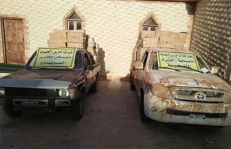 إحباط محاولة تسلل 16 عربة دفع رباعي عبر الحدود مع ليبيا والقبض على 20 من المهربين | صور