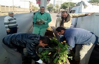 حملة نظافة موسعة لرفع كفاءة الشوارع بحي الدقي | صور