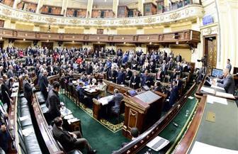 البرلمان: تشريعات جديدة لدمج الشباب المفرج عنهم بالعفو الرئاسي ومنع استقطاب الإخوان لهم