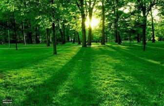 قصة أصحاب الجنة (الحديقة) (٢-٢)