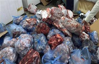 ضبط كميات من اللحوم والمنتجات الفاسدة بالإسكندرية